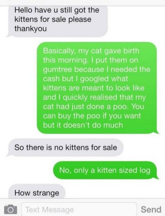 cat poo for sale